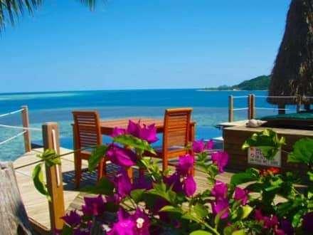 pool & bluewater views wadigi resort island