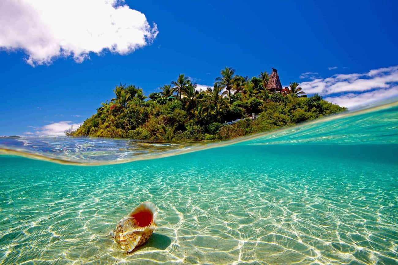 Wadigi Private Island Resort