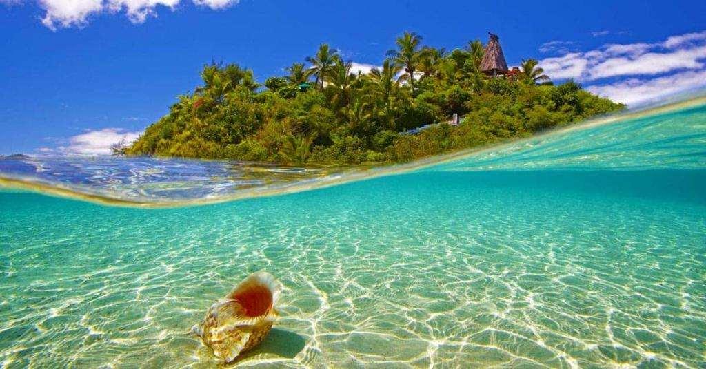 wadigi island facebook